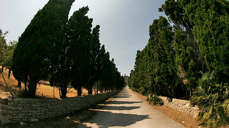 Die 150 Meter lange Zypressenallee vor dem Kloster