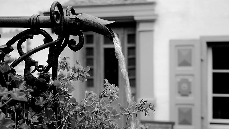 Weinhexbrunnen