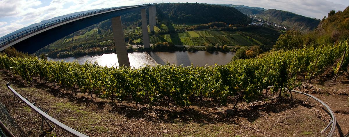 Vorschaubild Moseltalbrücke