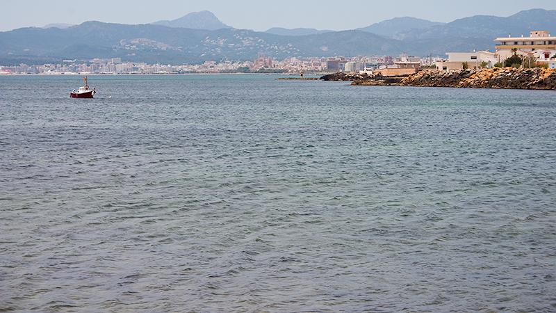 Blick auf Palma mit Hafen (links) und der Kathedrale La Seu (Mitte)