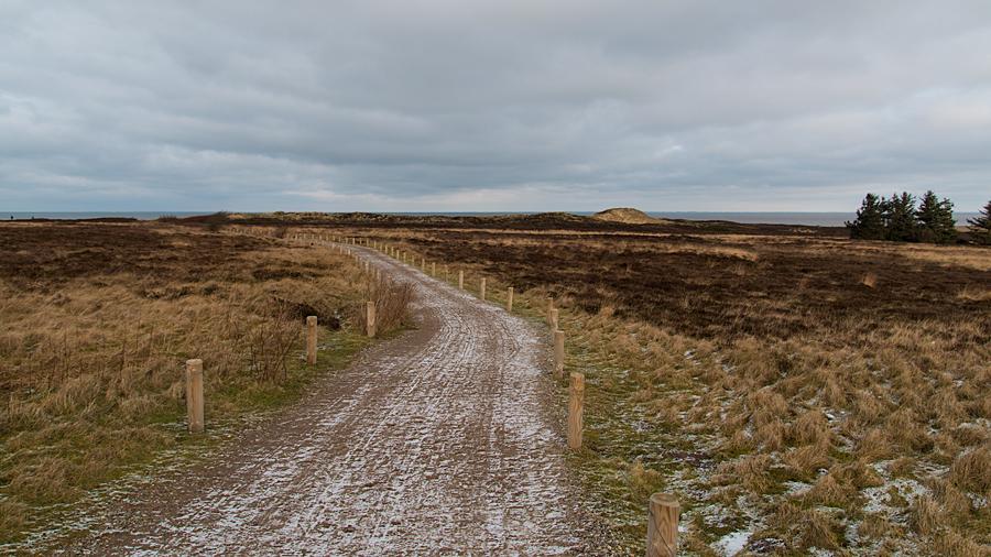 Weg zum Morsum Kliff