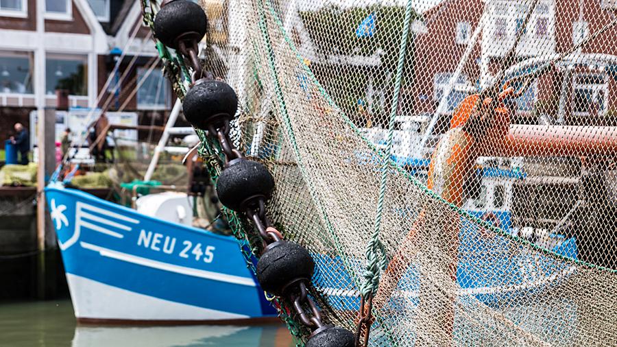 Versteckt hinter Fischnetzen