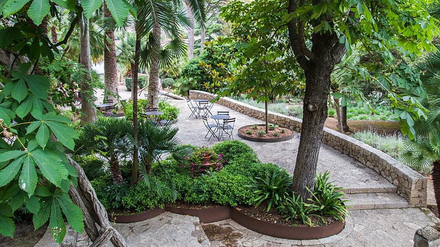 Cafébereich unter Palmen
