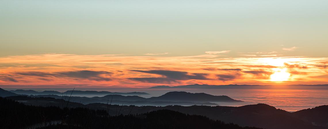 Vorschaubild Schwarzwald