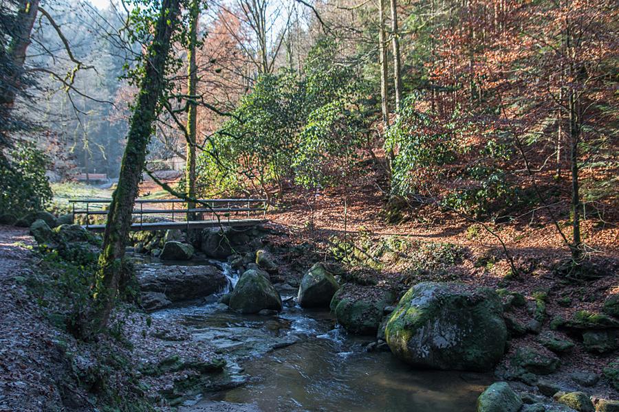 In der Nähe der Waldgaststätte