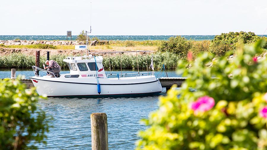 Kleines Fischerboot im Sportboothafen von Gedser, Dänemark